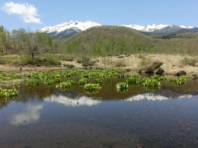 まいめ池からの乗鞍岳