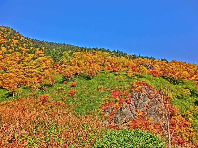 源泉付近の紅葉